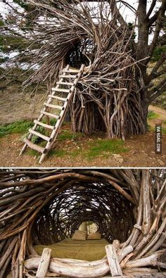 Awesome Tree Bed