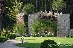 Jak zamienić glinę w wymarzony skrawek Ziemi. - strona 396 - Forum ogrodnicze - Ogrodowisko