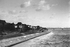 Znalezione obrazy dla zapytania panorama torunia most