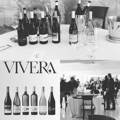 Il colore lo scegliete voi: bianco, rosso o rosato.   You choose the color: white,  red, pink   Vivera Winery   #Vivera #Etna and #Sicily #organic #wine #Italy 🇮🇹 #sicily  Mail ✉ info@vivera.it  +Vivera Etna Winery