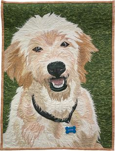 Duffer, by Patty Williams, Vermont Quilt Festival