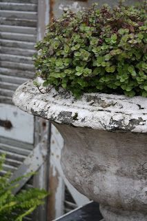 rustic urn~must start a collection. Garden Urns, Potted Garden, Garden Inspiration, Garden Ideas, Container Gardening, Container Plants, Beautiful Gardens, Outdoor Living, Outdoor Spaces