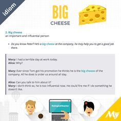 Big Cheese idiom examples