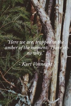 """Here we are, trapped in the amber of the moment. There is no why."" Vonnegut"
