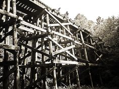 Abandoned Illinois Central Railroad Trestle in Western Kentucky.