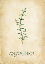 Jaro v Albertu - Herbář