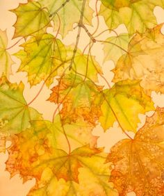 autumn leaves | julia loken - english botanical artist
