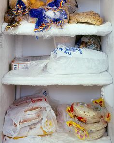 """piece from the genius """"you are what you eat"""" photo series of people's fridges.  uh yes, that is a snake."""