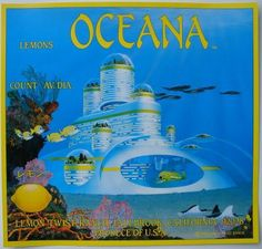 Oceana lemons crate label - blows my crate label-loving mind