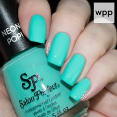 Salon Perfect Neon POP! Collection Mer-made of Money