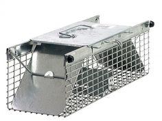 Havahart 1025 Live Animal Two-Door Chipmunk, Small Squirrel, Rat, and Weasel Cag #Havahart