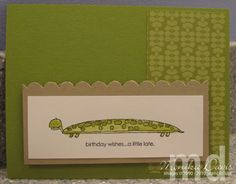 longfellows-turtle