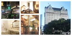 Manhattan NYC mit Kindern, Plaza Hotel NYC. Wohnen in  New York City. Central Park: Natürlich kann man mit Kindern nach NEW YORK CITY fahren! Manhattan hat so viel zu bieten. Meine Tipps zum Weitersagen: https://einfachstephie.de/2016/09/02/manhattan-new-york-city-mit-kindern/