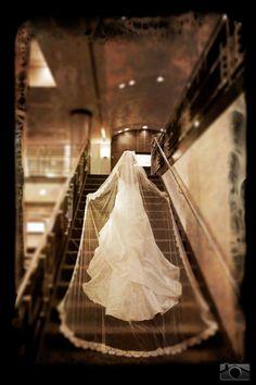 Wedding dress with cathedral wedding veil - St. Petersburg Wedding Mahaffey Theater – St. Petersburg Wedding Photographer – Ware House Studios