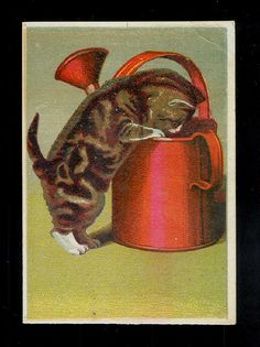 Helena Maguire. Kitten Peeking Into A Red Watering Can-1880s Victorian Trade Card
