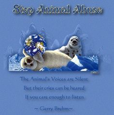 The Animal's Voices are Silent   But their cries can be heard   If you care enough to listen.  Gerry Brehm        Stop Animal Abuse