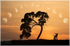 moon,moon,moon,moon,