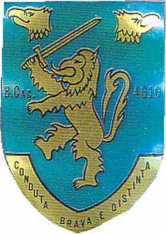 Batalhão de Caçadores 4616/73 Guiné