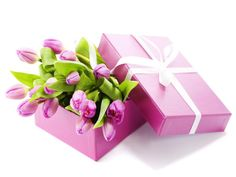 Birthday flowers and gifts delivery are closely related to each other. Visit Buds N Roses, make your choice and send birthday flowers and gifts to your loved ones. You can find excellent online birthday gift ideas for people of all the age groups. Birthday Gifts For Girlfriend, Best Birthday Gifts, Happy Birthday, Wallpapers Purple, Online Flower Delivery, Purple Tulips, Flowers Online, Order Flowers, Thoughtful Gifts