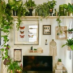 The best favorite ideas for the living room from Hygge Interiors - . - home accessories - 65 The best favorite ideas for the living room from Hygge Interiors - Boho Living Room, Living Room Interior, Living Room Furniture, Living Room With Plants, Jungle Living Room Ideas, Office With Plants, Bedroom With Plants, Plant Rooms, Living Rooms