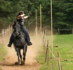 RMA is a horse archery club in Southern Oregon, dedicated to sharing mounted archery through club activities clinics, private instruction and competitions. Archery Club, Mounted Archery, Rogues, Pew Pew, Gallery, Animals, Google, Animales, Roof Rack