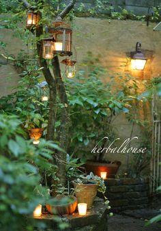 Pin on ガーデニング Small Courtyard Gardens, Small Backyard Gardens, Backyard Landscaping, Outdoor Gardens, Garden Nook, Lawn And Garden, Garden Art, Small Outdoor Spaces, Midnight Garden