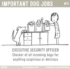 IMPORTANT DOG JOBS #11: EXECUTIVE SECURITY OFFICER - Checker of all incoming bags for anything suspicious or delicious