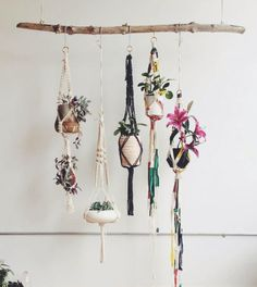 Macrame plant hanger - Hanging plants on limb. Decoration Branches, Room Decorations, Travel Decorations, Ideas Prácticas, Decor Ideas, Home And Deco, Hanging Planters, Diy Hanging, Diy Planters