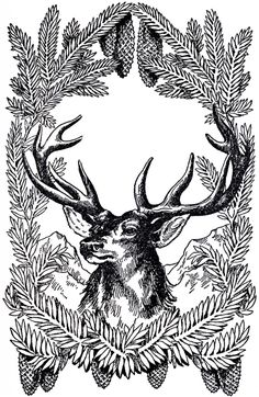 Free Vintage Christmas Pictures Deer--other colors too