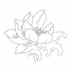 ดอกไม้ Sketch Tattoo Design, Tattoo Sketches, Tattoo Drawings, Flor Tattoo, Lotus Tattoo, Asian Tattoos, Desenho Tattoo, Hand Drawn Flowers, Japanese Flowers
