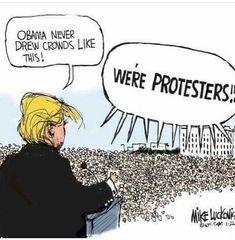 552 Best Trump Cartoons Images In 2020 Trump Cartoons Political