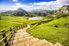 """Ninguna visita a Asturias está completa sin visitar a """"La Santina"""" y Picos de Europa. Los asturianos sienten verdadera devoción por la Virgen de Covadonga, aunque no nos sorprende, porque su Santuario situado en un entorno espectacular. Después de saludarla, ya que estás, déjate caer por los lagos Enol, La Ercina y el pequeño Bricial (aunque sólo tiene agua durante el deshielo). Están a más de 1.000 metros de altura y son de postal. Las vistas desde el Mirador de la Reina no tienen precio."""