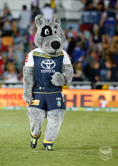 North Queensland Cowboys Mascot Sports Advertising, Rugby League, League Of Legends, Cowboys, Animals, Projects, Top, Ideas, Log Projects