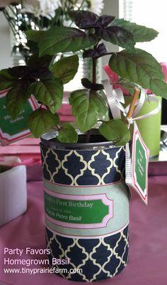 DIY PARTY FAVOR for a garden theme party.  Grow basil (or any herb) from seeds for your guests.  type up a little information about the herb from the seed packet, and include health benefits!