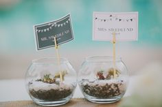 succulent escort cards   photos by Fondly Forever   100 Layer Cake