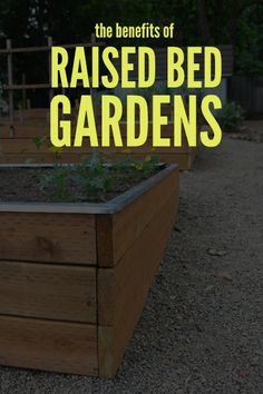 The benefits of gardening with raised beds