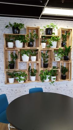 Container gardening Inspirational idea 5508717292 to ponder for your outdoor space. Indoor Garden, Indoor Plants, Home And Garden, House Plants Decor, Plant Decor, Diy Bedroom Decor, Diy Home Decor, Small Balcony Decor, Diy Plant Stand