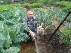 Un agricultor foarte talentat... Mi-a placut metoda sa - Pentru Ea Garden Design Pictures, Small Garden Design, Back Gardens, Small Gardens, Home Vegetable Garden, Garden Club, Pergola Patio, Growing Vegetables, Country Life