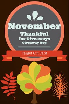 B is 4: #ThankfulForGiveaways Giveaway Hop: Target Gift Card