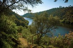 Tagus river in Belver, Portugal.