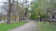 Bratislava - Medická záhrada 8