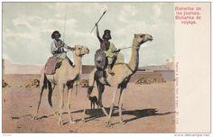 Bisharins on the journey. , Egypt , 00-10s