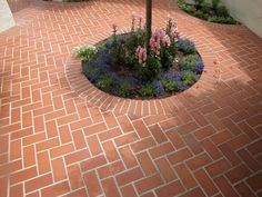 Herringbone Brick Pattern for Patio | Brick Pattern, HerringboneBrick PatioLandscaping NetworkCalimesa, CA