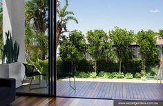 Floorboards & deck - Landscape Design Coogee | Secret Gardens of Sydney