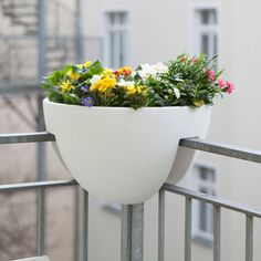 Balkon - balKonzept, Eckling, Steckling