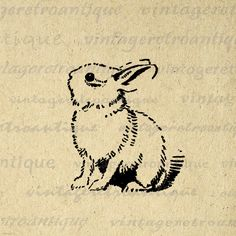 Cute Bunny Rabbit Image Printable Digital Easter Download Spring Graphic Antique Clip Art for Transfers HQ 300dpi No.061 via Etsy