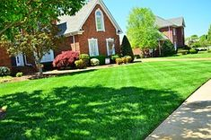 Luscious Lawn Care Tips for Breathtakingly Beautiful Grass – Planted Perfect Landscaping Supplies, Landscaping Company, Backyard Landscaping, Landscape Maintenance, Lawn Maintenance, Organic Lawn Care, Lawn Care Companies, Residential Landscaping, Lawn Care Tips