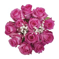 Roses are sustainably grown and available in a wide variety of hues to add elegance and class to any occasion. Buy Flowers, Fresh Flowers, Dozen Roses, Rose Bouquet, Fields, Hot Pink, Floral Wreath, Size 12, Bloom