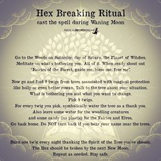 Magick Spells, Witchcraft, Forest Fairy, Moon Phases, Book Of Shadows, Shout Out, Spelling, Prayers, Blessed