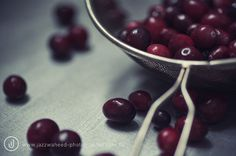 cranberry close up